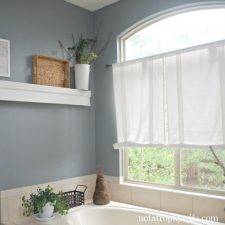 New Paint in the Master Bath   Before and After