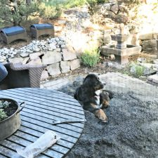BACKYARD MAKEOVER REVEAL SEVEN YEARS IN THE MAKING