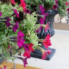 How to Add Height to Urn Planters
