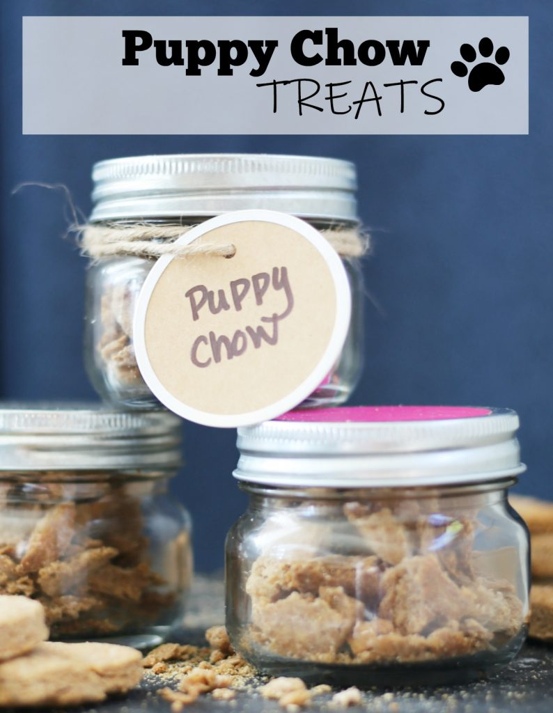 homemade-puppy-chow-treats-feature