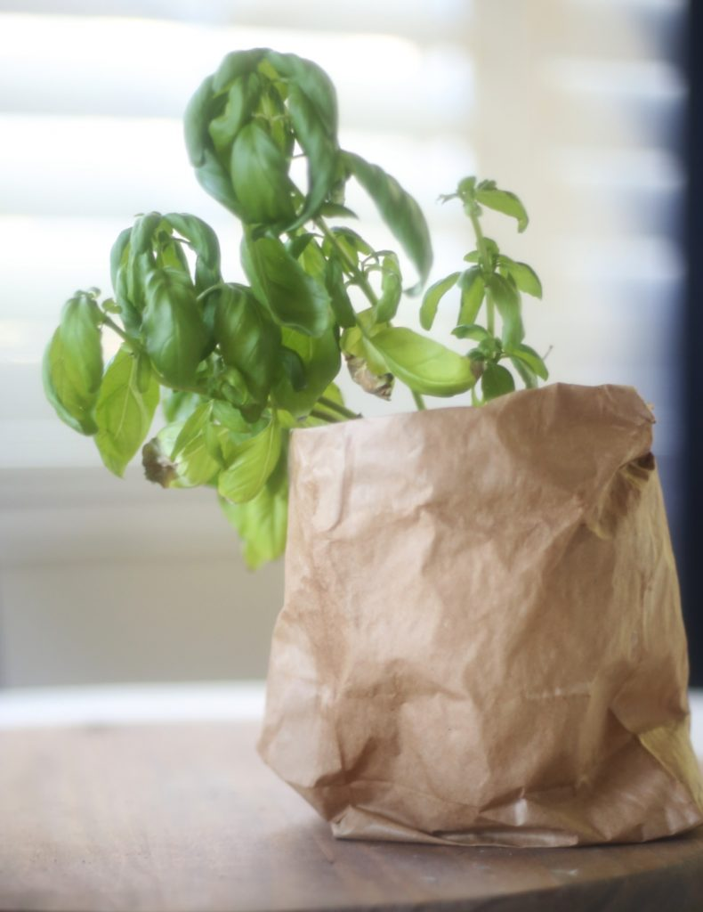simple-reusable-paper-bag-hack