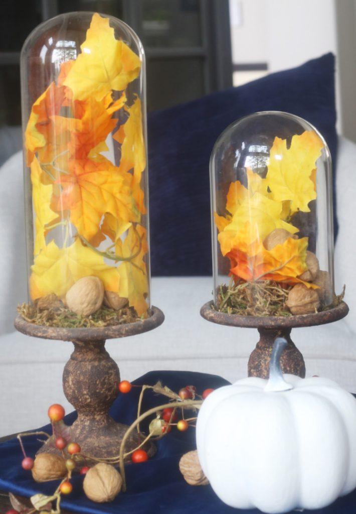 fall-cloche-white-pumpkin