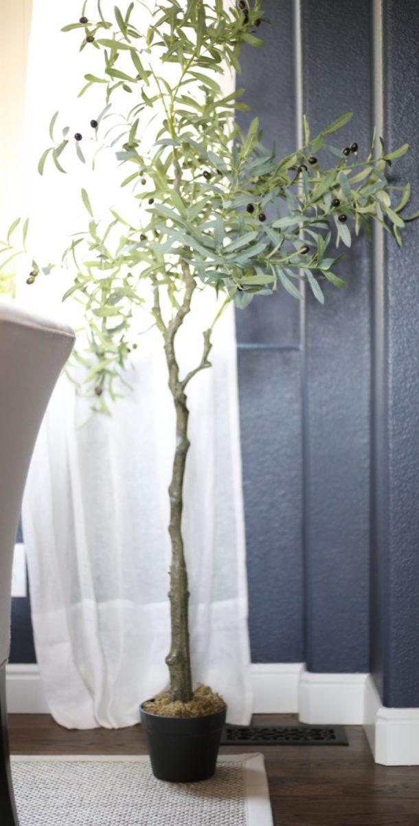 how-to-make-a-indoor-plants-look-bigger